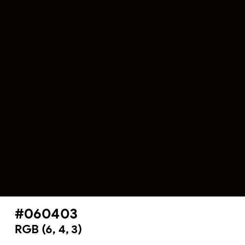 Fashion Black (Hex code: 060403) Thumbnail