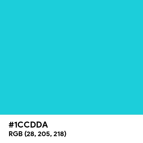 Dark Turquoise (Hex code: 1CCDDA) Thumbnail