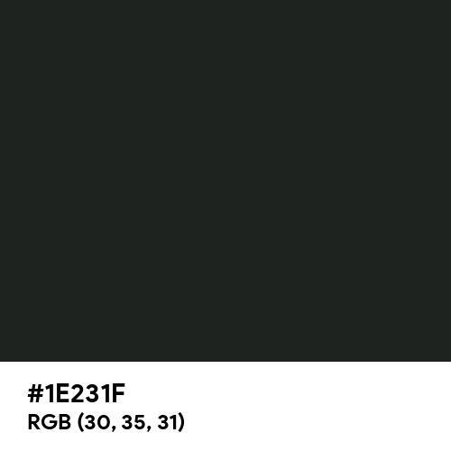 Dark Jungle Green (Hex code: 1E231F) Thumbnail