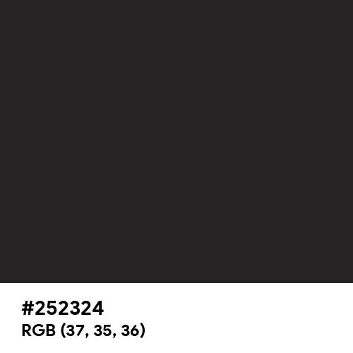 Glossy Black (Hex code: 252324) Thumbnail