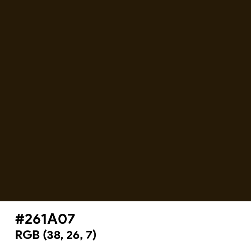 Raw Umber (Ferrario) (Hex code: 261A07) Thumbnail