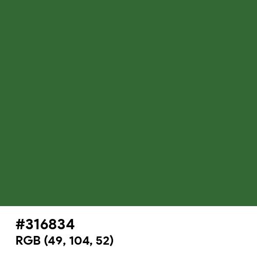 Emerald Green (RAL) (Hex code: 316834) Thumbnail
