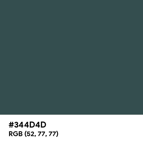 Payne's Grey (Hex code: 344D4D) Thumbnail