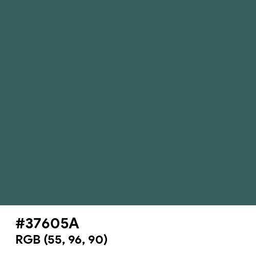 Dark Slate Gray (Hex code: 37605A) Thumbnail