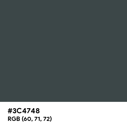 Panda Black (Hex code: 3C4748) Thumbnail