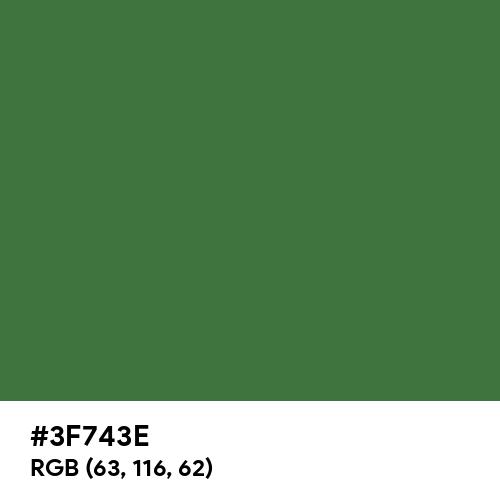 Fern Green (Hex code: 3F743E) Thumbnail