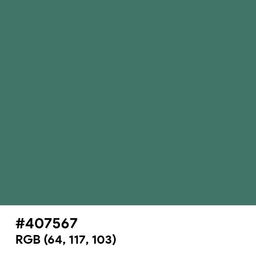 Hooker's Green (Hex code: 407567) Thumbnail