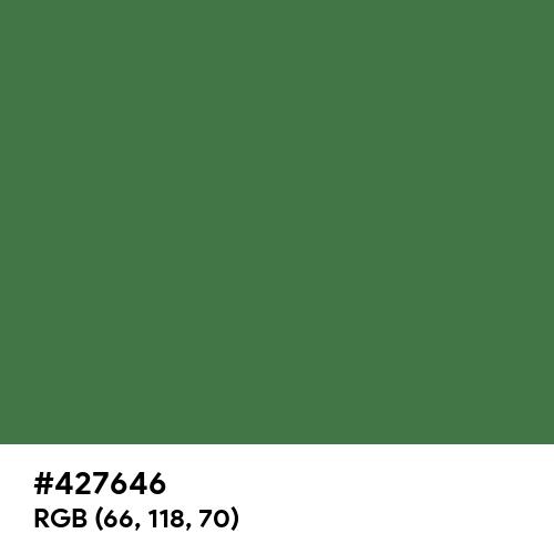 Dull Green (Hex code: 427646) Thumbnail