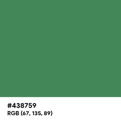 Rustic Green (Hex code: 438759) Thumbnail