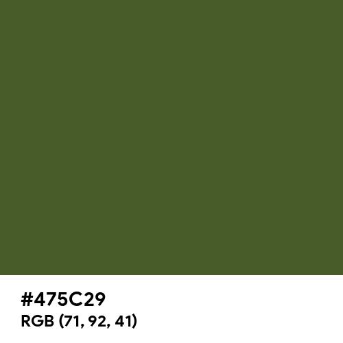 Dark Moss Green (Hex code: 475C29) Thumbnail