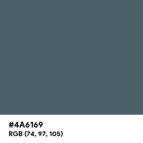Cone Green Blue (Hex code: 4A6169) Thumbnail
