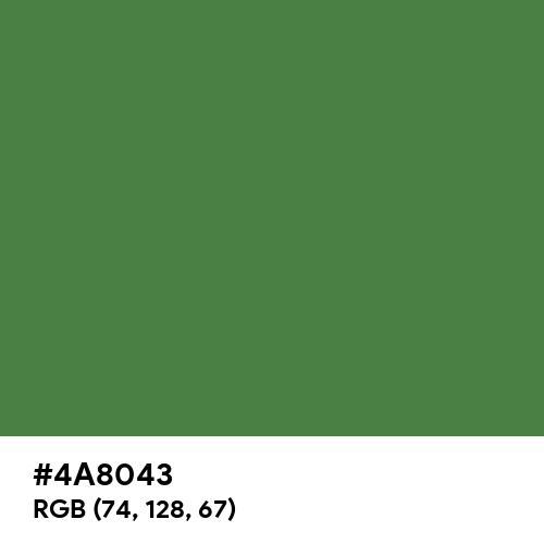 Chameleon Green (Hex code: 4A8043) Thumbnail
