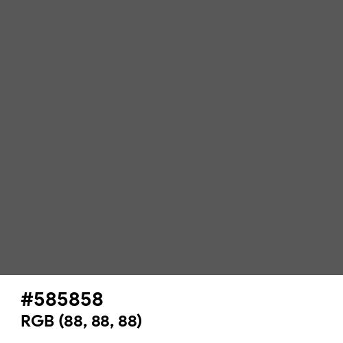Davy's Grey (Hex code: 585858) Thumbnail
