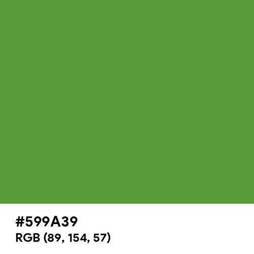 Yellow Green (RAL) (Hex code: 599A39) Thumbnail