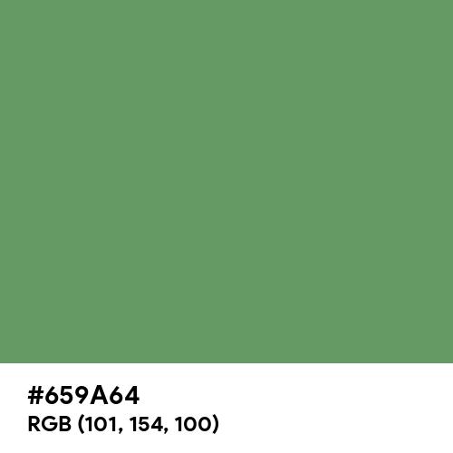 Russian Green (Hex code: 659A64) Thumbnail