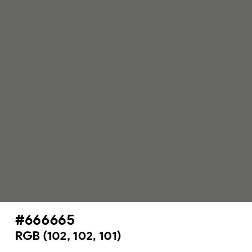Granite Gray (Hex code: 666665) Thumbnail
