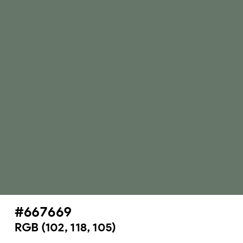 Dim Gray (Hex code: 667669) Thumbnail
