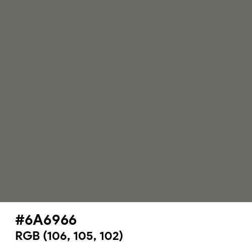 Dim Gray (Hex code: 6A6966) Thumbnail