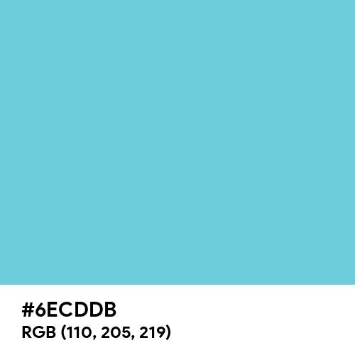 Pastel Ocean (Hex code: 6ECDDB) Thumbnail