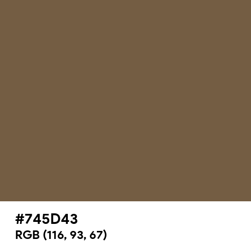 Vintage Coffee (Hex code: 745D43) Thumbnail