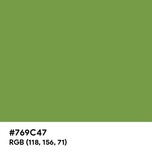 Palm Leaf (Hex code: 769C47) Thumbnail