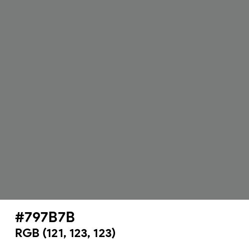Pearl Dark Grey (RAL) (Hex code: 797B7B) Thumbnail