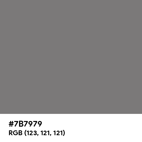 Sonic Silver (Hex code: 7B7979) Thumbnail