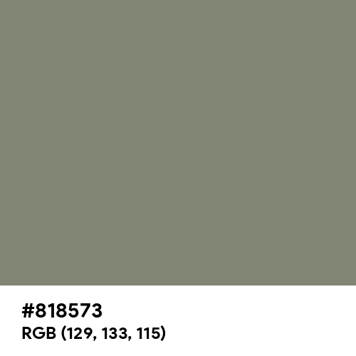 Camouflage Green (Hex code: 818573) Thumbnail