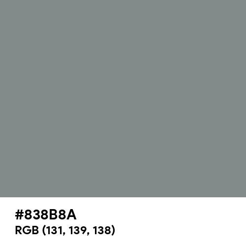Vintage Grey (Hex code: 838B8A) Thumbnail