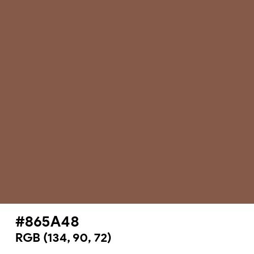 Dark Skin (Hex code: 865A48) Thumbnail