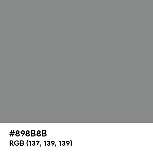 Philippine Gray (Hex code: 898B8B) Thumbnail