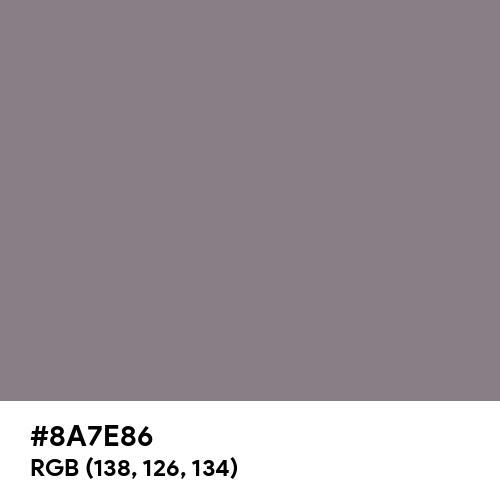 Rocket Metallic (Hex code: 8A7E86) Thumbnail