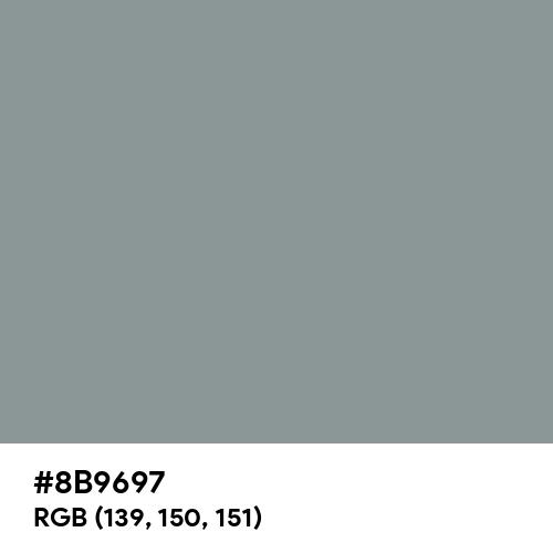 Spanish Gray (Hex code: 8B9697) Thumbnail
