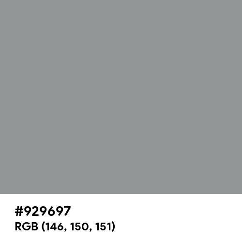 Spanish Gray (Hex code: 929697) Thumbnail