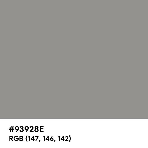 Philippine Gray (Hex code: 93928E) Thumbnail