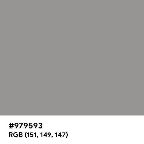 Spanish Gray (Hex code: 979593) Thumbnail