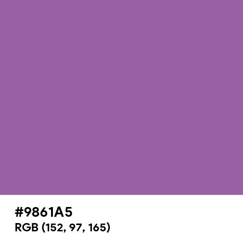 Dull Purple (Hex code: 9861A5) Thumbnail