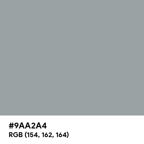 Sea Gray (Hex code: 9AA2A4) Thumbnail