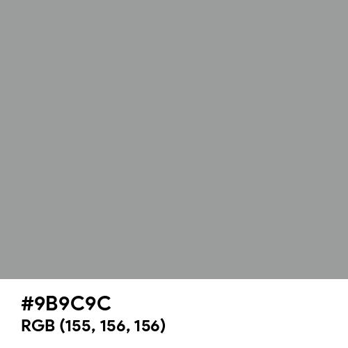 Spanish Gray (Hex code: 9B9C9C) Thumbnail