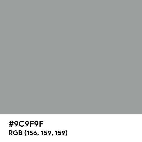Spanish Gray (Hex code: 9C9F9F) Thumbnail