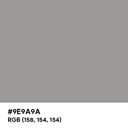 Warm Grey (Hex code: 9E9A9A) Thumbnail