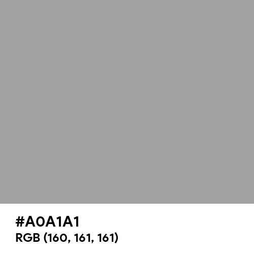 Spanish Gray (Hex code: A0A1A1) Thumbnail