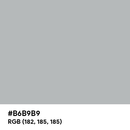 Ash Gray (Hex code: B6B9B9) Thumbnail