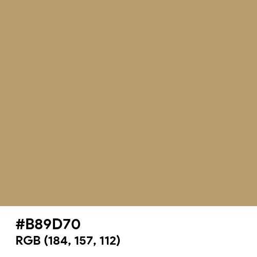 Camel (Hex code: B89D70) Thumbnail