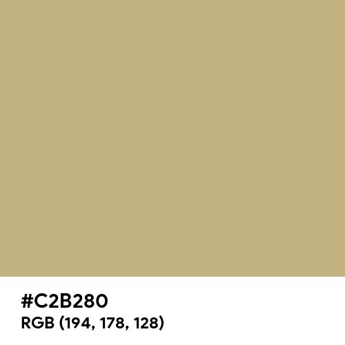 Ecru (Hex code: C2B280) Thumbnail