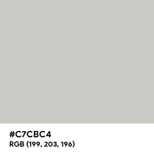 Papyrus White (Hex code: C7CBC4) Thumbnail