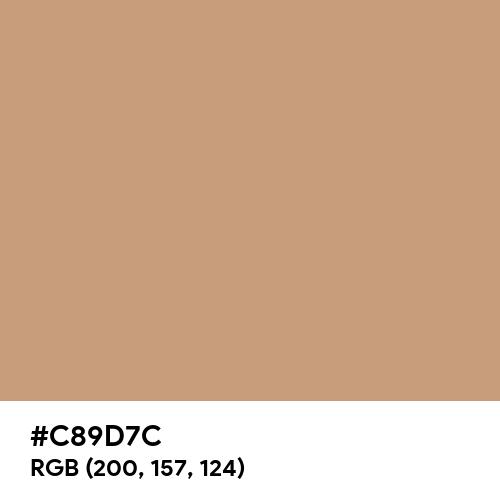 Light Brown (Hex code: C89D7C) Thumbnail