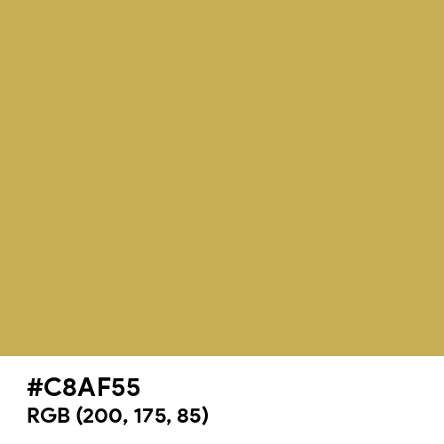 Old Yellow (Hex code: C8AF55) Thumbnail