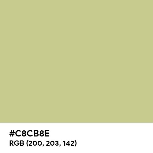 Springtide Green (Hex code: C8CB8E) Thumbnail
