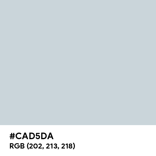 Silver CMYK (Hex code: CAD5DA) Thumbnail